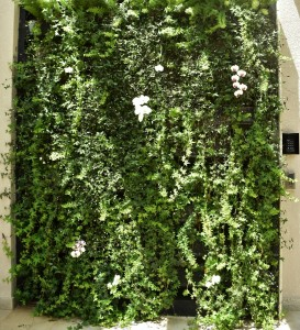 Parede verde - Condomínio residencial